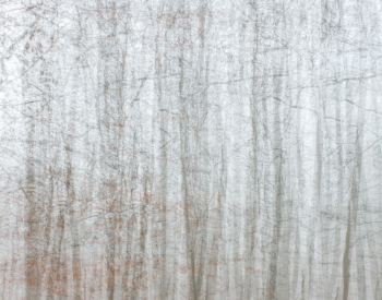 Recall-Natur-1187