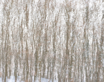 Homepage-Winter-1499-scaled