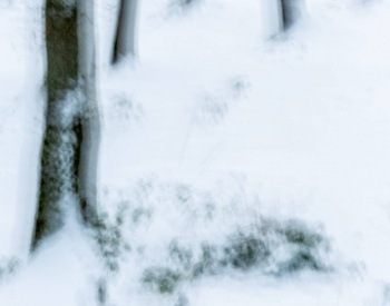 Homepage-Winter-1644-scaled